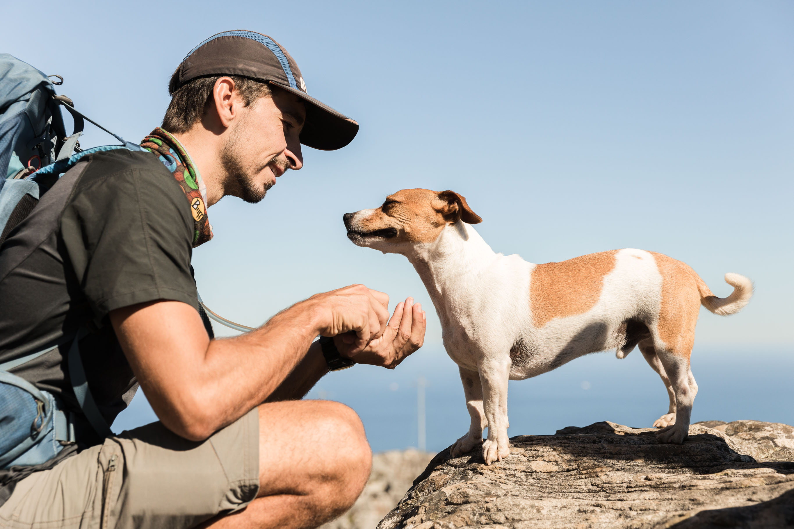 Look for the Airbnb experience called Hike Table Mountain with a Guide!